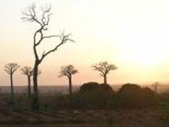 Madagascar - Il cuore dell'Isola-continente